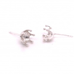 Ear pin RS7