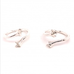 Small ring RP19