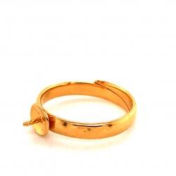 Ring RP2P