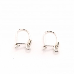 Closed earwire AGS
