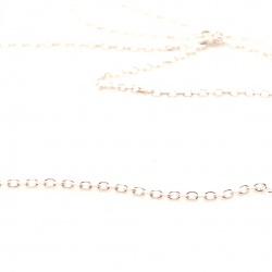 ANKIER025 chain